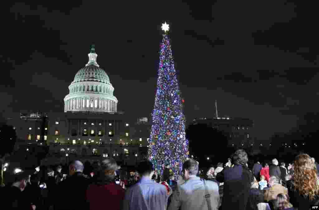 Рождественская ель у Капитолия