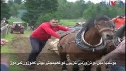 بوسنیا: گھوڑوں کی روایتی دوڑ