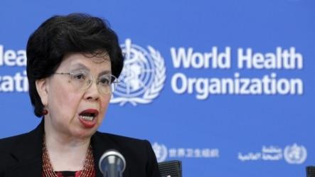 世界卫生组织总干事陈冯富珍就卫生应急准备和响应能力对媒体讲话(2015年7月31日)