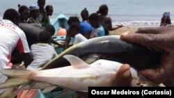 Pescadores, São Tomé e Príncipe