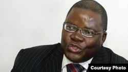 Former Finance Minister and Movement for Democratic Change renewal Team member, Tendai Biti.