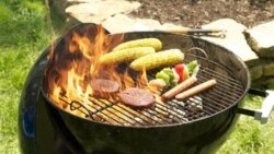 Enjoying Outdoor Cooking, Without the Unwanted Visitors