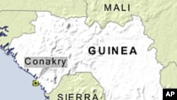 Rights Group: Guinea Military Killed at Least 157 in Crackdown