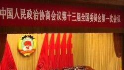 中国政协开会 修宪及任期制话题敏感