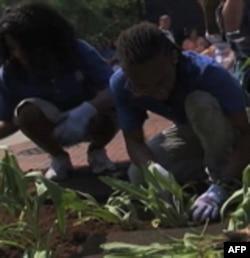 Deca sade bilje u plastične rupe na veštačkom ostrvu