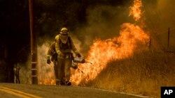 Petugas pemadam kebakaran sedang berusaha agar kebakaran lahan tidak meluas ke Santa Ana Road dekat Ventura, California, 9 Desember 2017.