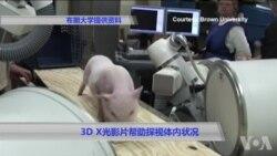 3D X光影片帮助探视体内状况
