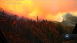 Пожежі в Каліфорнії: кількість жертв зростає. Відео