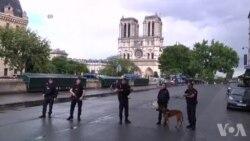 Dîmen ji Herêma Dêra Notre-Dame li Parîs ya ku Êrîş lê Pêkhatî