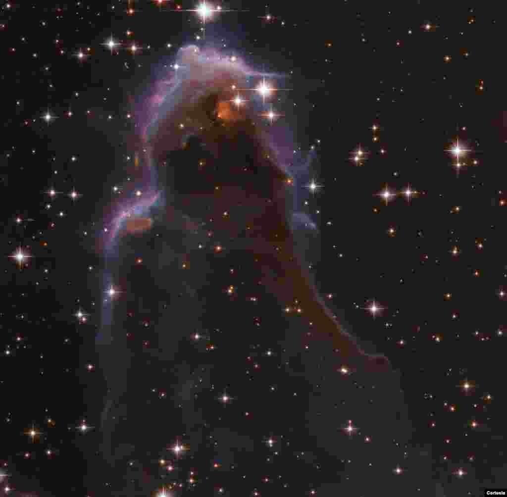 Sorprendentemente, dentro de esta burbuja de gas caliente alrededor de una estrella masiva cercana se encuentran los frEGG: glóbulos oscuros y compactos de polvo y gas, algunos de los cuales están dando a luz a estrellas de baja masa. [Foto: Cortesía NASA