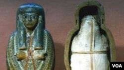 Mumi dari zaman Mesir Kuno membantu para pakar meneliti penyakit masa lalu untuk mencegah penyakit di masa kini dan mendatang.