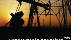 Govenro angolano errou ao ssumir preços de petroleo altos - 21:40