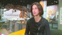 美国万花筒:种族关系·恐龙展·变废品为艺术
