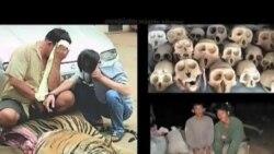 Wildlife Protector Takes Pride in His Work