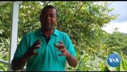 Políticos do Príncipe discordam sobre os avanços da ilha