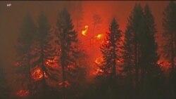 科学家称气候暖化导致美西野火恶化