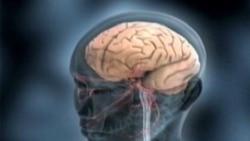 کشف ارتباط بین امواج مغزی و پیش بینی حرکات انسان