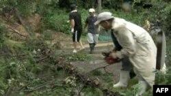 Yaponlar tayfunun nəticələrini aradan qaldırmağa çalışırlar