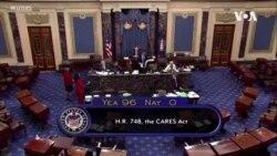 参议院通过两万亿美元经济刺激法案