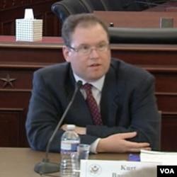 Kurt Bassuener, Vijeće za demokratizaciju politike