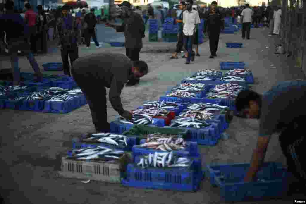 غزہ شہر میں مچھلی فروش سمندر سے پکڑی جانے والی مچھلیاں فروخت کررہے ہیں.