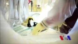 ایبولا وائرس پاکستان کے لیے خطرہ کیوں؟