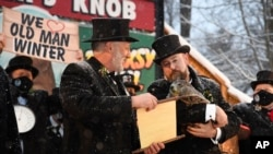 Groundhog Club handler A.J. Dereume holds Punxsutawney Phil, the weather prognosticating groundhog, as Vice President Tom Dunkel reads the scroll during the 135th celebration of Groundhog Day on Gobbler's Knob in Punxsutawney, Pa. Tuesday, Feb. 2, 2021. (