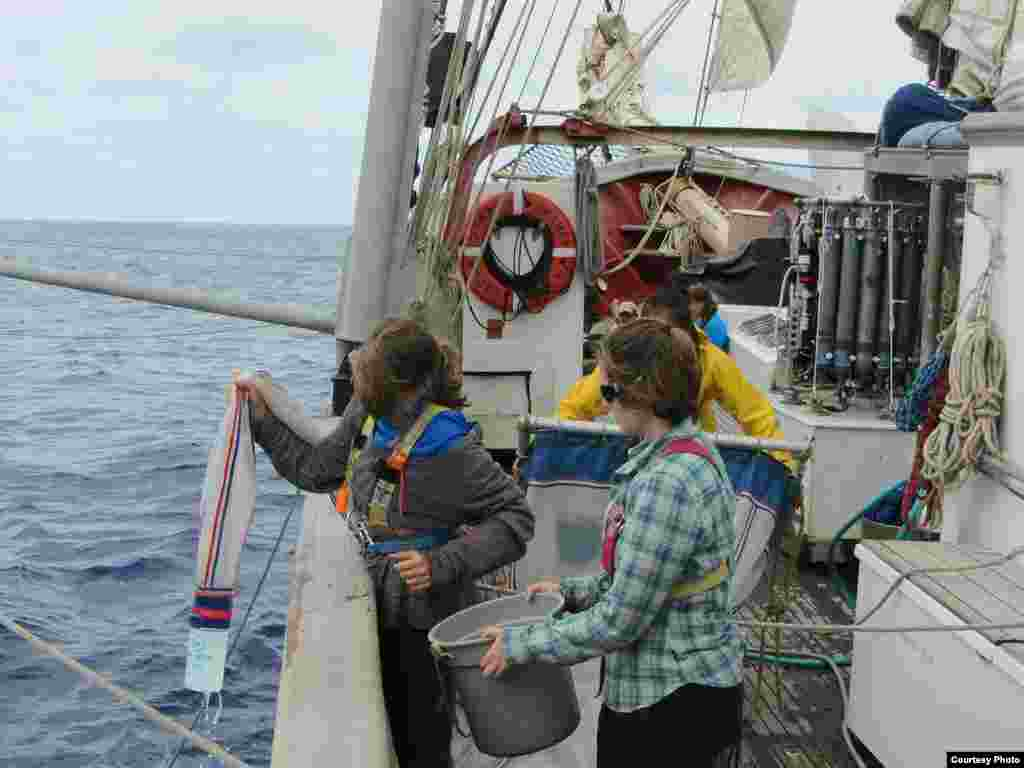 SEA Semester students Allison Adams and Annie Scofield retrieve nets with plastic and plankton in them. (Credit: E. Zettler, SEA Education Association)