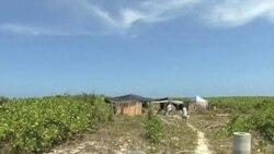 VN phản đối TQ đấu thầu dầu khí trong lãnh hải Việt Nam