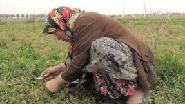 Gjendje e vështirë e refugjatëve sirianë në Turqi