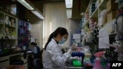 عالمی سطح پر کرونا وائرس کا پھیلاؤ روکنے اور اس سے بچاؤ کی ویکسین کی تیاری پر بھی کام جاری ہے۔ (فائل فوٹو)