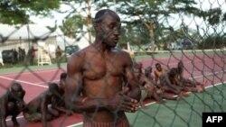Dân quân thân ông Gbagbo bị lực lượng của ông Ouattara bắt giữ