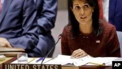 Hasta ahora, el Consejo de Seguridad de la ONU, sostiene que las organizaciones regionales son las más indicadas para intentar resolver el tema.