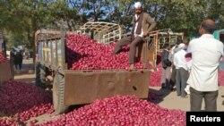 인도 나시크의 농산품 공판장에서 농부가 양파를 팔기 위해 기다리고 있다. (자료사진)
