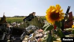 우크라이나 동부 도네츠크의 말레이시아 항공기 추락 현장에 비행기 잔해가 흩어져 있다.