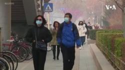 中國武漢肺炎死亡人數升至56