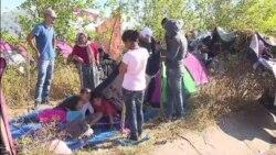 Edirne'ye Yürüyen Mültecilerin Hedefi Almanya