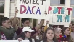 美國80萬年輕無證移民前景未卜 (粵語)