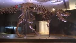 Lelang Disney hingga T-Rex di Era COVID