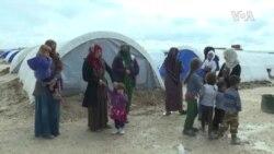 年终报道:2019全球难民人数续增长