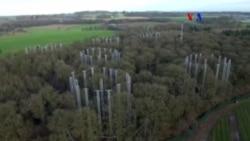 Laboratorio forestal mide CO2