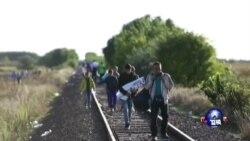 大批中东难民继续涌入欧洲