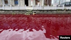 """This man looking a polluted river in China's Zhejiang province might be thinking, """"This just can't be good."""" (July 24, 2014)"""