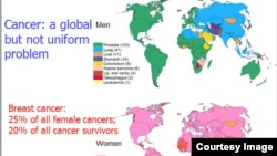 Bản đồ các loại ung thư thường gặp trên toàn thế giới. (WHO / IARC)