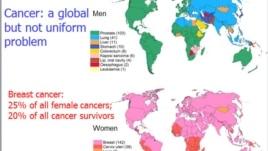 Raporti për Kancerin në Botë
