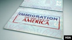 The executive order, which will take effect in around six months, offers temporary work permits to around 4.7 million immigrants who entered the country illegally.