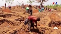 Malavi kəndliləri qızıl axtarır