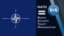 Explainer NATO