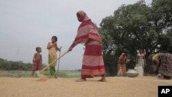 Bangladeshning dehqon ayollari