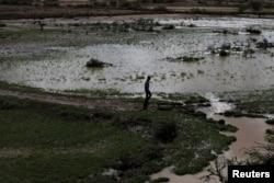 Faayilii:El Nino barana Afrikaa bokkaa guddaan dhufe.Kun ollaa Botor, Somaliland Ebla 16, 2016.